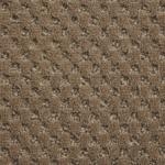 Carpete Bolero Yearling 007  9x4000mm