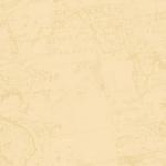 Papel de parede Coleção Boy  GB72101
