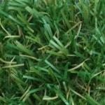 Grama Sintética Comfort Grass Tempo 18mm  988001 18x2000mm
