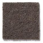 Carpete Bravo 3660x6x50000mm  Castanho 003